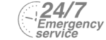 24/7 Emergency Service Pest Control in Golders Green, Hampstead Garden Suburb, NW11. Call Now! 020 8166 9746
